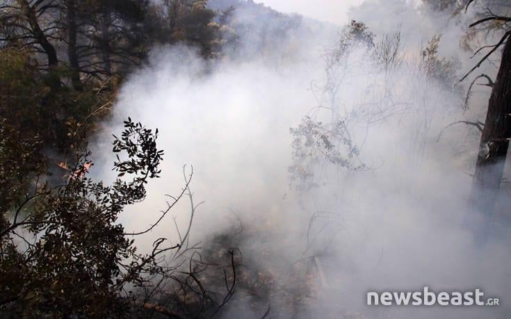 Μεγάλη φωτιά στην Εύβοια: Αναζωπυρώσεις στην περιοχή Μακρυμάλλη dfohfd1