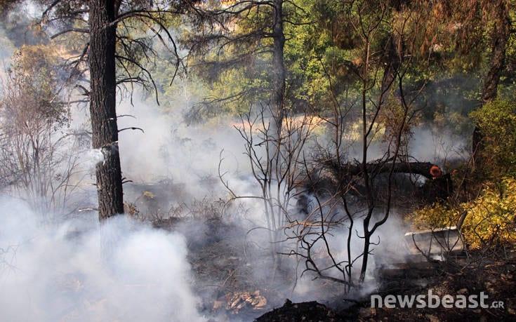 Μεγάλη φωτιά στην Εύβοια: Αναζωπυρώσεις στην περιοχή Μακρυμάλλη dfohfd2