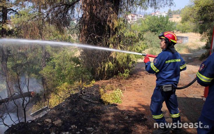 Μεγάλη φωτιά στην Εύβοια: Αναζωπυρώσεις στην περιοχή Μακρυμάλλη dfohfd3