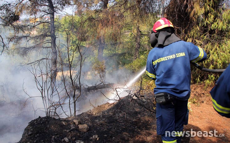 Μεγάλη φωτιά στην Εύβοια: Αναζωπυρώσεις στην περιοχή Μακρυμάλλη dfohfd4