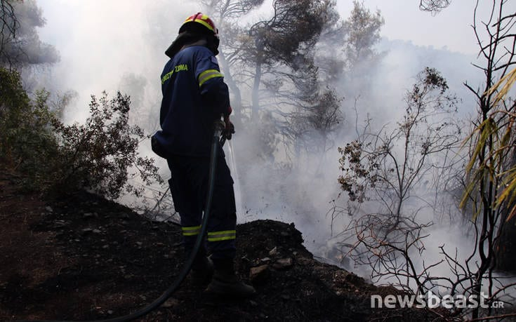 Μεγάλη φωτιά στην Εύβοια: Αναζωπυρώσεις στην περιοχή Μακρυμάλλη dfohfd5
