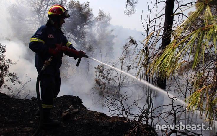 Μεγάλη φωτιά στην Εύβοια: Αναζωπυρώσεις στην περιοχή Μακρυμάλλη dfohfd6
