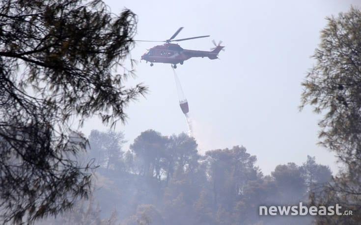 Μεγάλη φωτιά στην Εύβοια: Αναζωπυρώσεις στην περιοχή Μακρυμάλλη dfohfd9