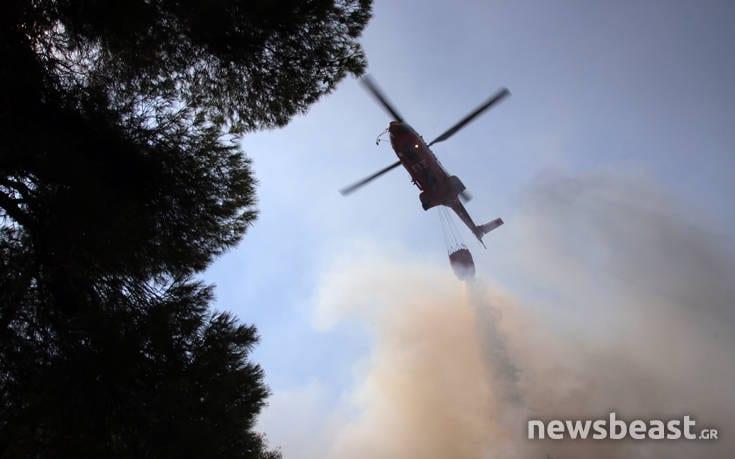 Μεγάλη φωτιά στην Εύβοια: Αναζωπυρώσεις στην περιοχή Μακρυμάλλη fogfhdi9