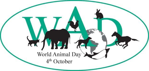 , Παγκόσμια Ημέρα των Ζώων, Eviathema.gr | ΕΥΒΟΙΑ ΝΕΑ - Νέα και ειδήσεις από όλη την Εύβοια