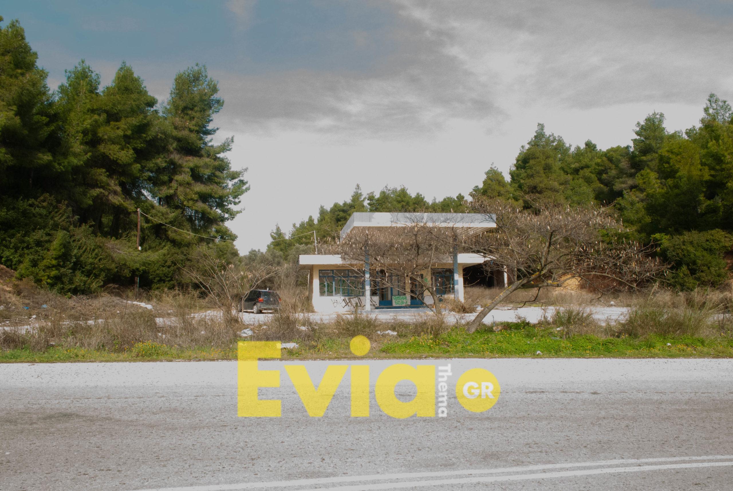 , Ενοικιάζεται οικόπεδο 7 στρεμμάτων στα Ψαχνά, Eviathema.gr | Εύβοια Τοπ Νέα Ειδήσεις