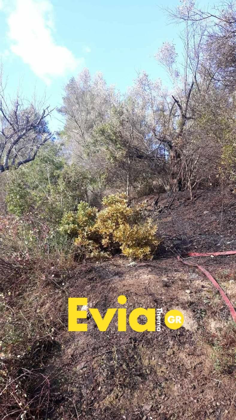 Μακρυκάπα Ευβοίας: Έχασε τον έλεγχο της φωτιάς Photo 1582905528576