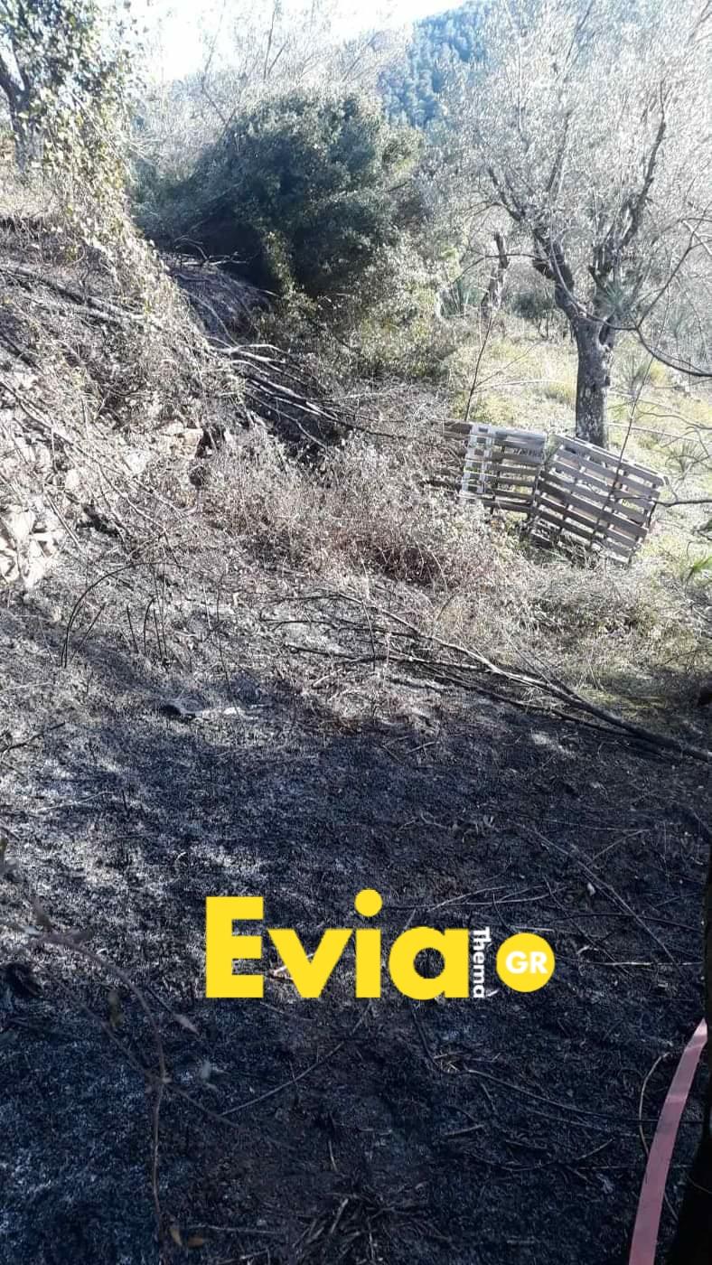 Μακρυκάπα Ευβοίας: Έχασε τον έλεγχο της φωτιάς Photo 1582905529073
