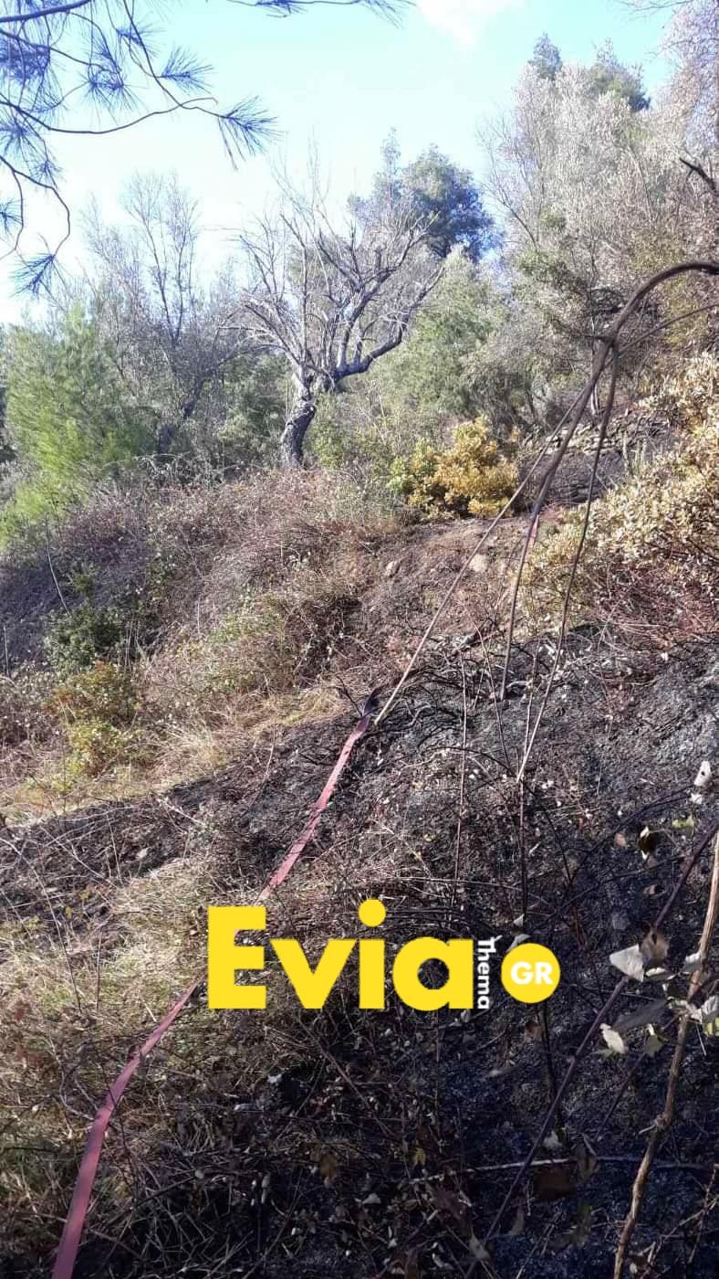 Μακρυκάπα Ευβοίας: Έχασε τον έλεγχο της φωτιάς Photo 1582905529469