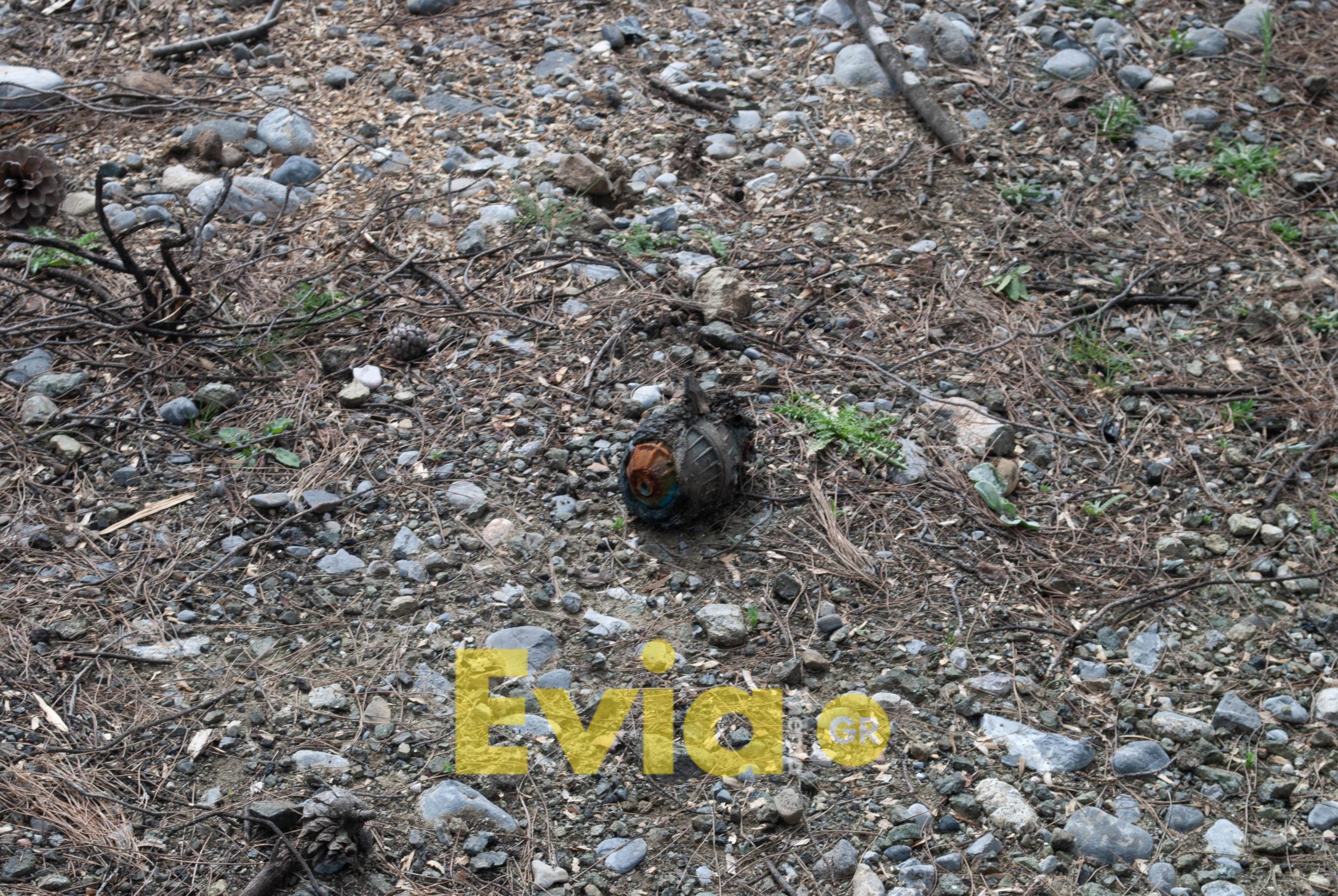 αναδάσωση μακρυμάλλη ΑΠΟΚΛΕΙΣΤΙΚΟ – Μακρυμάλλι Ευβοίας: Βρέθηκε χειροβομβίδα στην περιοχή της αναδάσωσης (Φωτογραφίες – Βίντεο) DSC 0245 scaled