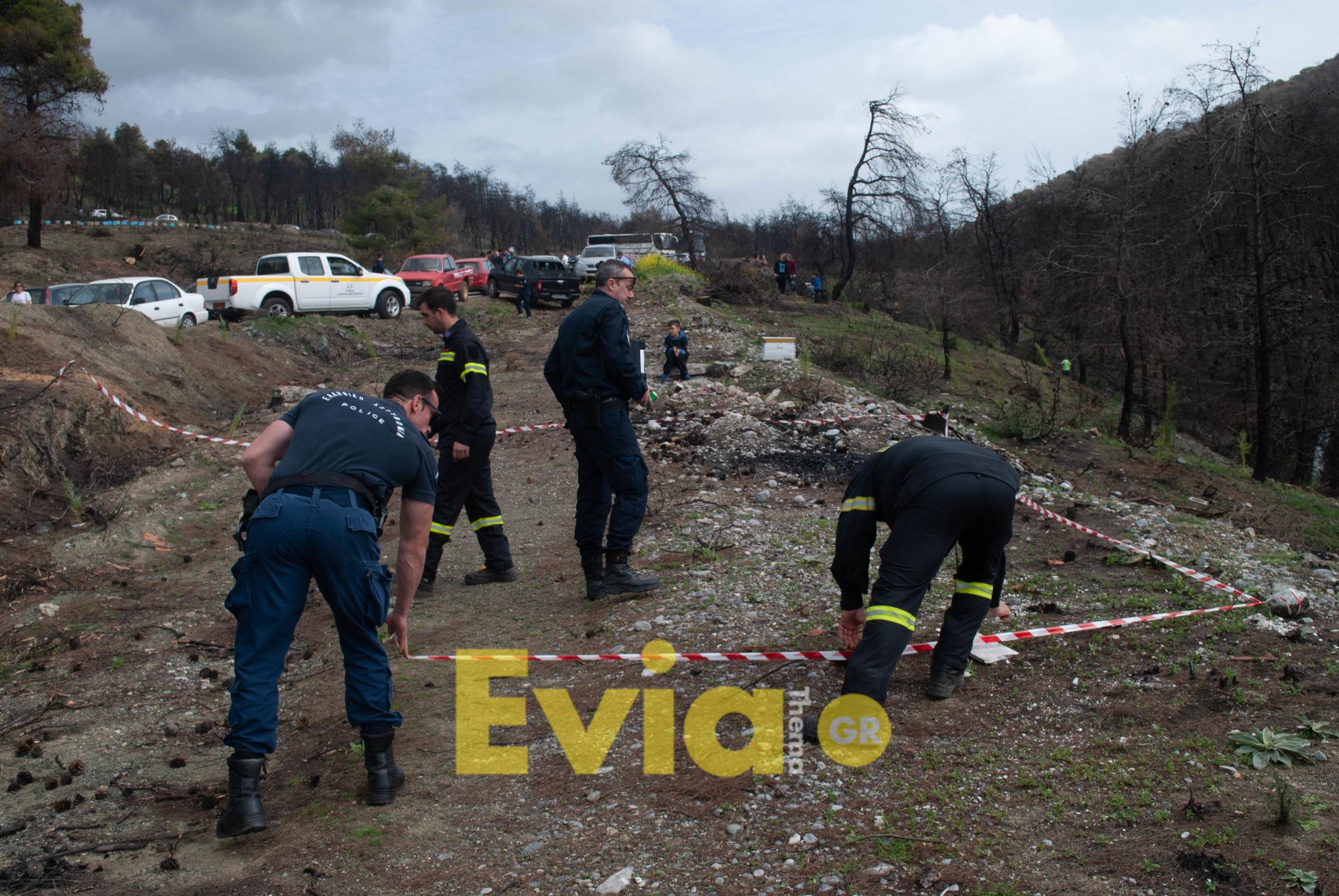 Μακρυμάλλι Ευβοίας: Βρέθηκε χειροβομβίδα, ΑΠΟΚΛΕΙΣΤΙΚΟ – Μακρυμάλλι Ευβοίας: Βρέθηκε χειροβομβίδα στην περιοχή της αναδάσωσης (Φωτογραφίες – Βίντεο), Eviathema.gr | Εύβοια Τοπ Νέα Ειδήσεις
