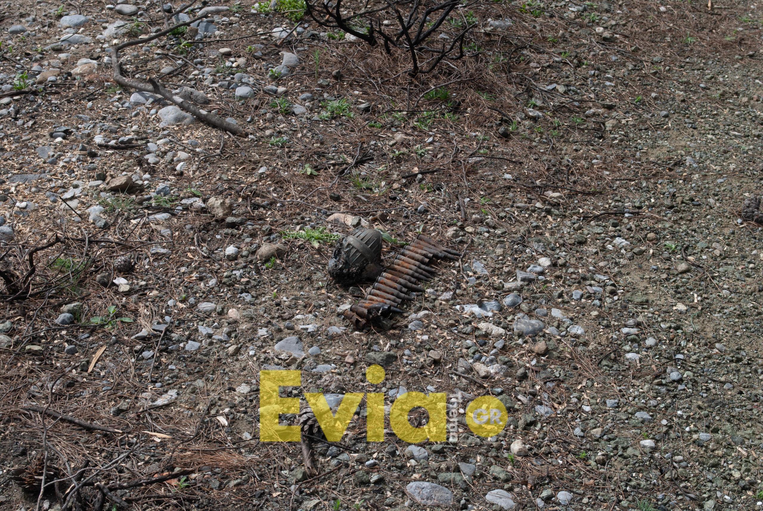 αναδάσωση μακρυμάλλη ΑΠΟΚΛΕΙΣΤΙΚΟ – Μακρυμάλλι Ευβοίας: Βρέθηκε χειροβομβίδα στην περιοχή της αναδάσωσης (Φωτογραφίες – Βίντεο) DSC 0253 scaled