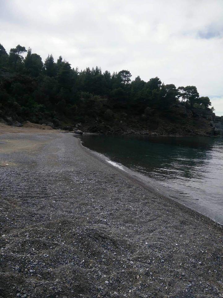 , Δήμος Μαντουδίου Λίμνης Αγ. Άννας: Ξεκίνησαν και οι καθαρισμοί των παραλιών, Eviathema.gr | ΕΥΒΟΙΑ ΝΕΑ - Νέα και ειδήσεις από όλη την Εύβοια