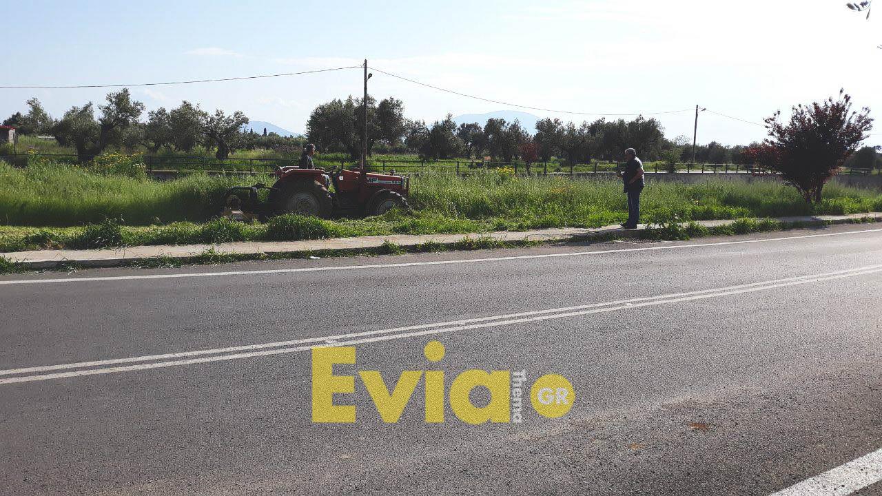 Γιώργος Ψαθάς, Γιώργος Ψαθάς: Το έχει βάλει σκοπό να ομορφύνει τον δήμο, Eviathema.gr | ΕΥΒΟΙΑ ΝΕΑ - Νέα και ειδήσεις από όλη την Εύβοια