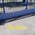 , Καινούριο έγινε το Λύκειο Ψαχνών (ΦΩΤΟΓΡΑΦΙΕΣ), Eviathema.gr | Εύβοια Τοπ Νέα Ειδήσεις