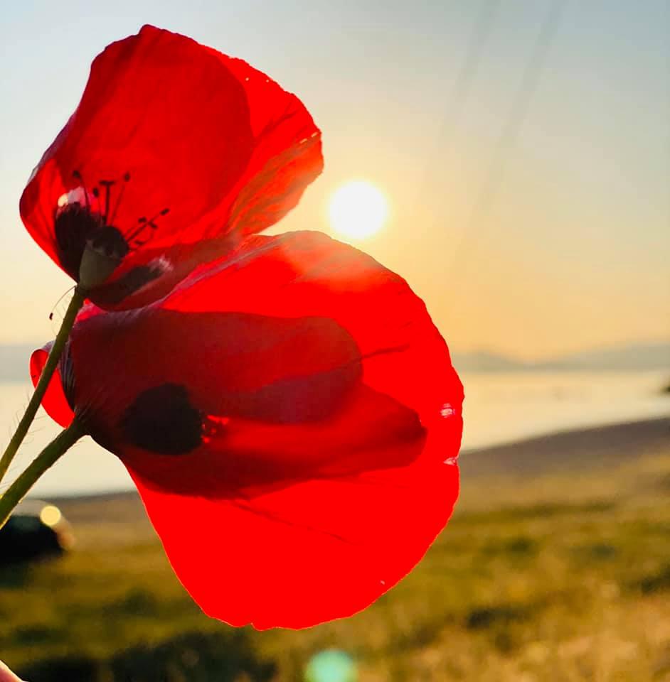 , Λευτέρης Ραβιόλος: Φέτος η Πρωτομαγιά μπορεί να είναι διαφορετική αλλά θα μας θυμίζει πάντα πως οι αγώνες θέλουν θυσίες, ομοψυχία και ενότητα, Eviathema.gr | Εύβοια Τοπ Νέα Ειδήσεις