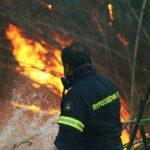 , Καμαρίτσα Ευβοίας: Πυρκαγιά σε αποθήκη, Eviathema.gr | Εύβοια Τοπ Νέα Ειδήσεις