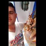 , Πλούσια τα ελέη του Ευβοϊκού – Δείτε τι έπιασε νεαρός ψαράς στον Κάραβο Αλιβερίου [ΒΙΝΤΕΟ], Eviathema.gr   Εύβοια Τοπ Νέα Ειδήσεις