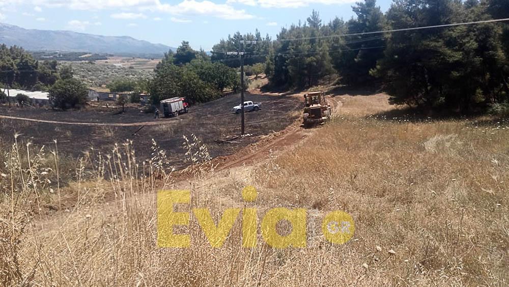 Πισσώνας Ευβοίας: Πυρκαγιά σε έκταση το μεσημέρι της Τρίτης, Πισσώνας Ευβοίας: Πυρκαγιά σε έκταση το μεσημέρι της Τρίτης [ΦΩΤΟΓΡΑΦΙΕΣ], Eviathema.gr | ΕΥΒΟΙΑ ΝΕΑ - Νέα και ειδήσεις από όλη την Εύβοια