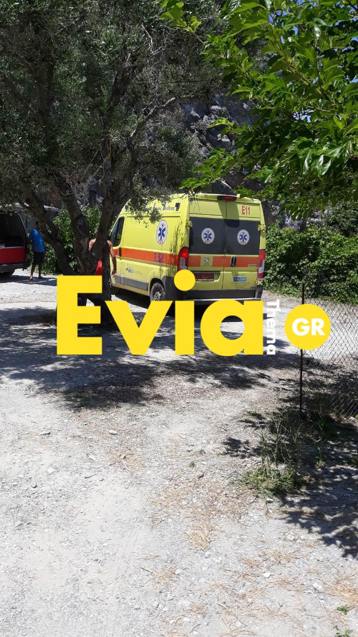 Χιλιαδού Ευβοίας: 20χρονος νεκρός στην παραλία γυμνιστών, Χιλιαδού Ευβοίας: 20χρονος νεκρός στην παραλία γυμνιστών [ΦΩΤΟΓΡΑΦΙΕΣ], Eviathema.gr | Εύβοια Τοπ Νέα Ειδήσεις