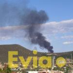 , Χαλκίδα: Ανεξέλεγκτη πυρκαγιά στη Χαραυγή – Σπεύδουν δυνάμεις της πυροσβεστικής [ΦΩΤΟΓΡΑΦΙΕΣ], Eviathema.gr | Εύβοια Τοπ Νέα Ειδήσεις