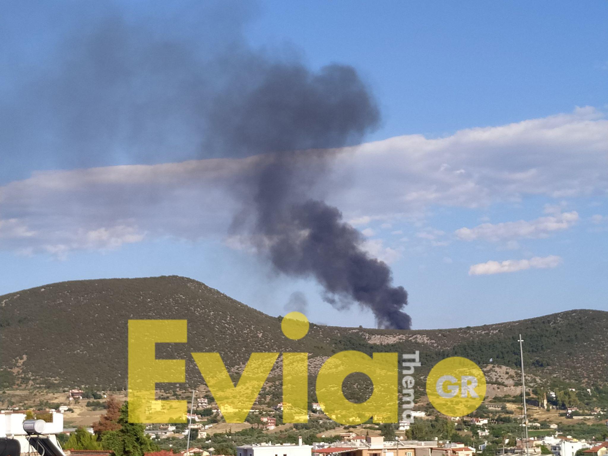 Χαλκίδα: Ανεξέλεγκτη πυρκαγιά στη Χαραυγή, Χαλκίδα: Ανεξέλεγκτη πυρκαγιά στη Χαραυγή – Σπεύδουν δυνάμεις της πυροσβεστικής [ΦΩΤΟΓΡΑΦΙΕΣ], Eviathema.gr | ΕΥΒΟΙΑ ΝΕΑ - Νέα και ειδήσεις από όλη την Εύβοια