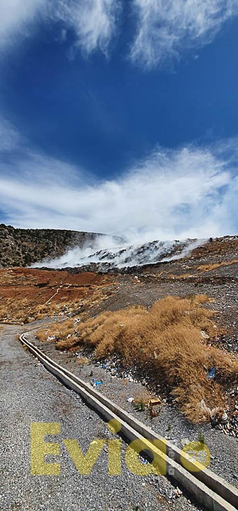 Χαλκίδα: Περιορισμένη η φωτιά στην Περιοχή της Χαραυγής