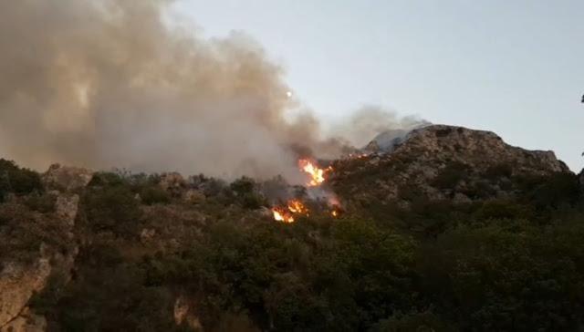 , Παγόντας Ευβοίας: Φωτιά ξέσπασε το μεσημέρι της Τρίτης – Δύσκολη η πρόσβαση της Πυροσβεστικής [ΒΙΝΤΕΟ], Eviathema.gr | ΕΥΒΟΙΑ ΝΕΑ - Νέα και ειδήσεις από όλη την Εύβοια