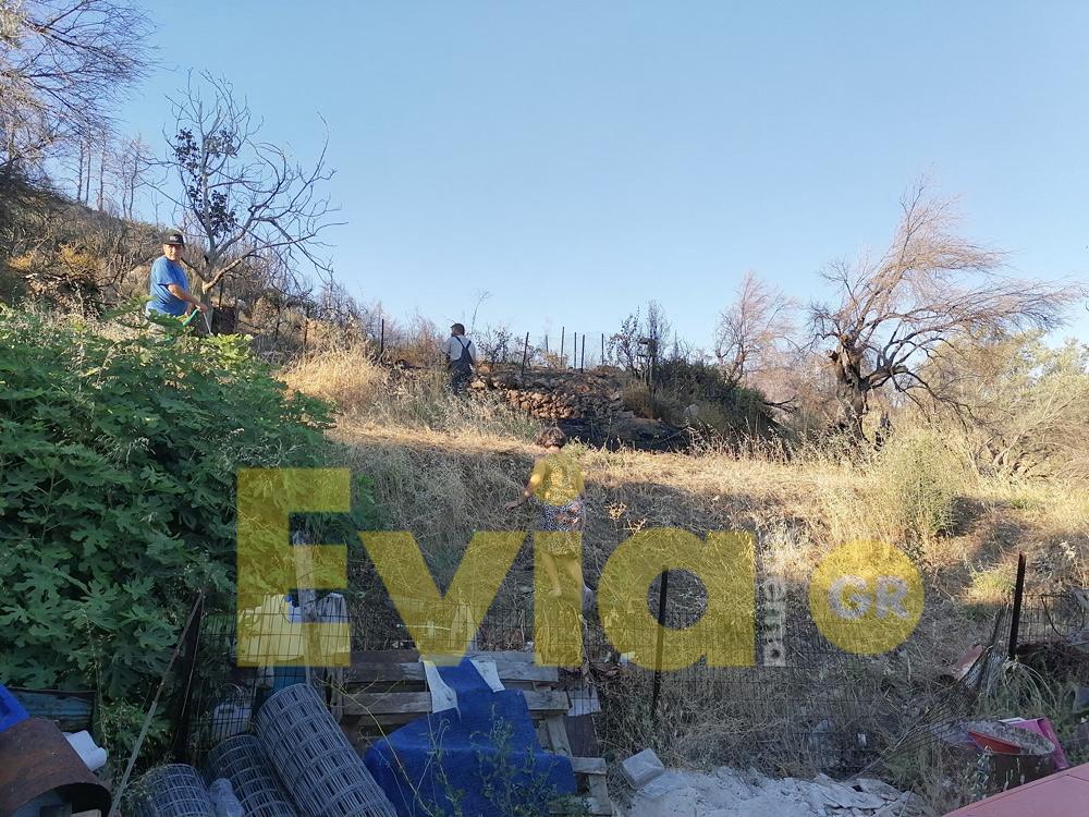 Κοντοδεσπότι Ευβοίας: Φωτιά στην περιοχή Προφήτης Ηλίας, Κοντοδεσπότι Ευβοίας: Φωτιά στην περιοχή Προφήτης Ηλίας το απόγευμα της Τετάρτης – Εξετράπη πυροσβεστικό όχημα [ΦΩΤΟΓΡΑΦΙΕΣ – BINTEO], Eviathema.gr | Εύβοια Τοπ Νέα Ειδήσεις