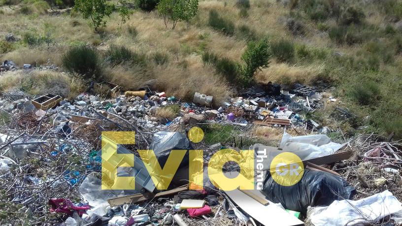 Γεμάτη σκουπίδια η είσοδος του χωριού, Πούρνος Ευβοίας – Απαράδεκτες εικόνες: Γεμάτη σκουπίδια η είσοδος του χωριού [ΦΩΤΟΓΡΑΦΙΕΣ], Eviathema.gr | ΕΥΒΟΙΑ ΝΕΑ - Νέα και ειδήσεις από όλη την Εύβοια