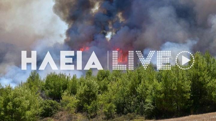 , Πύρινος εφιάλτης στην Ηλεία – Ανεξέλεγκτη η φωτιά  [ΦΩΤΟ – ΒΙΝΤΕΟ], Eviathema.gr | Εύβοια Τοπ Νέα Ειδήσεις