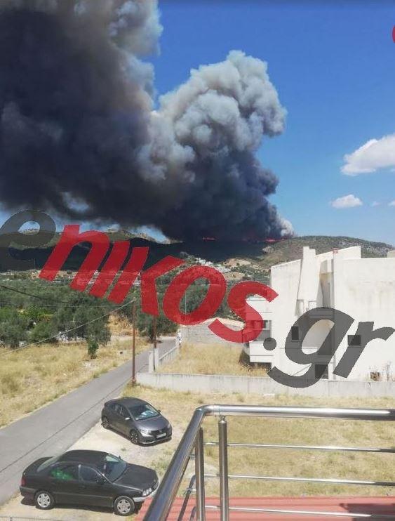 Μεγάλη φωτιά στην Κορινθία, Μεγάλη φωτιά στην Κορινθία: Εκκενώθηκαν οικισμοί και κατασκήνωση – Κοντά στο στρατόπεδο οι φλόγες, Eviathema.gr | ΕΥΒΟΙΑ ΝΕΑ - Νέα και ειδήσεις από όλη την Εύβοια