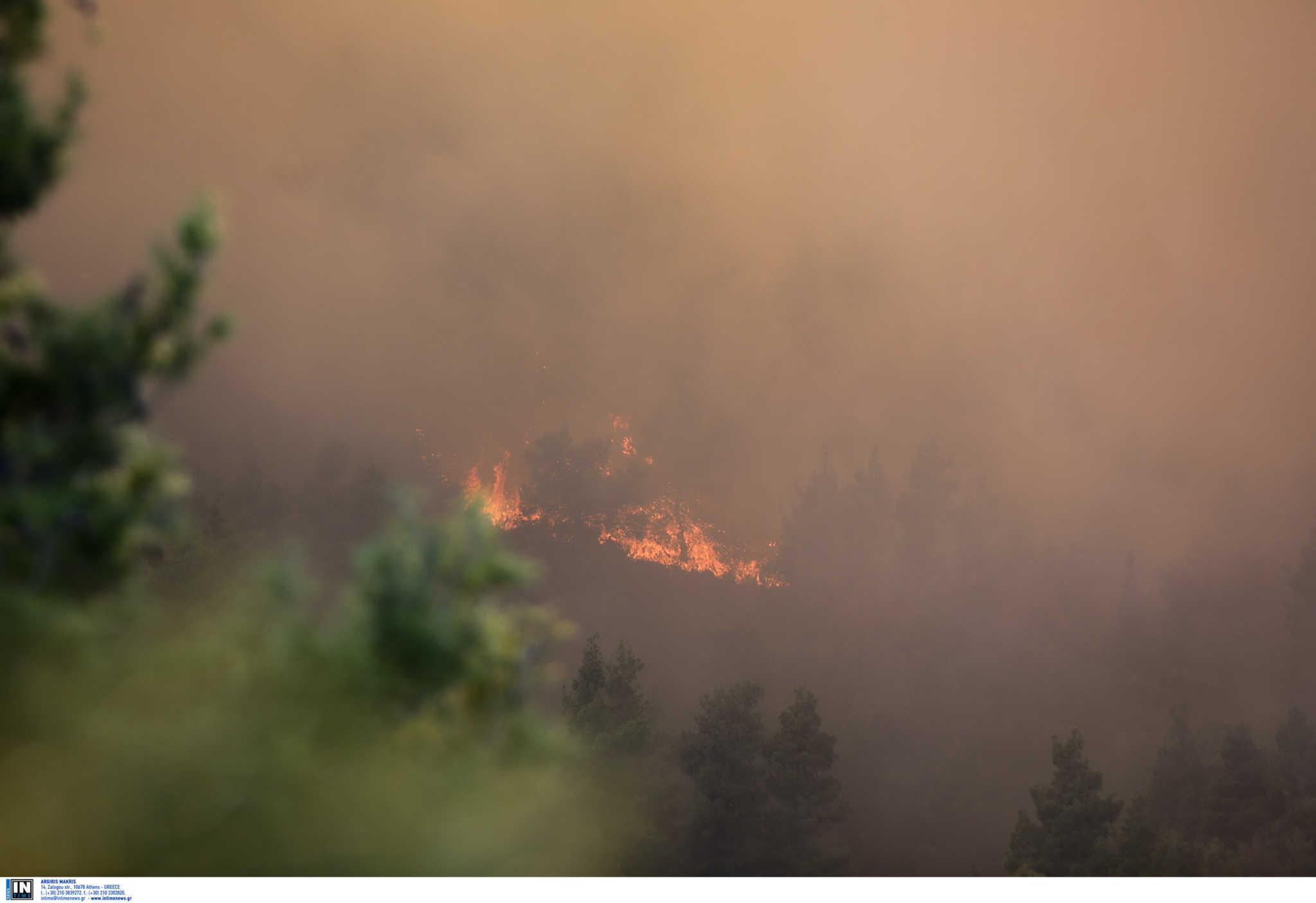 Χίος: Ισχυρή πυρκαγιά στην ΒΙΑΛ