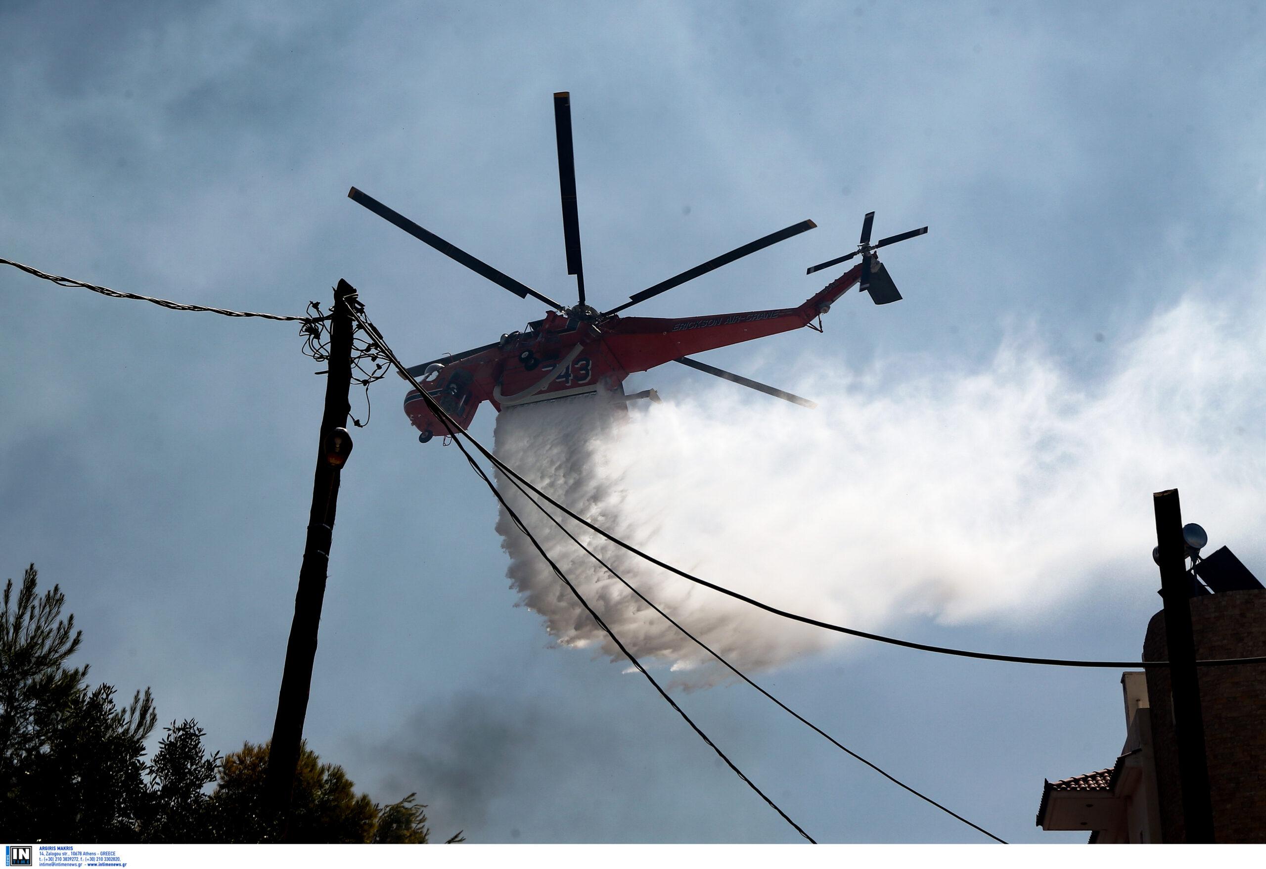 Φωτιά στον Πύργο Ηλείας, Φωτιά στον Πύργο Ηλείας το μεσημέρι της Κυριακής, Eviathema.gr | Εύβοια Τοπ Νέα Ειδήσεις