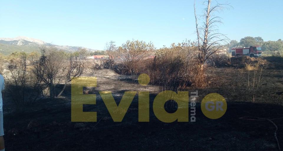 Φωτιά αυτή τη στιγμή στον Περιφερειακό δρόμο προς Πάλιουρα Ευβοίας, Φωτιά το απόγευμα της Παρασκευής στον Περιφερειακό δρόμο Πάλιουρα προς Καθενούς Ευβοίας [ΦΩΤΟΓΡΑΦΙΑ], Eviathema.gr | ΕΥΒΟΙΑ ΝΕΑ - Νέα και ειδήσεις από όλη την Εύβοια
