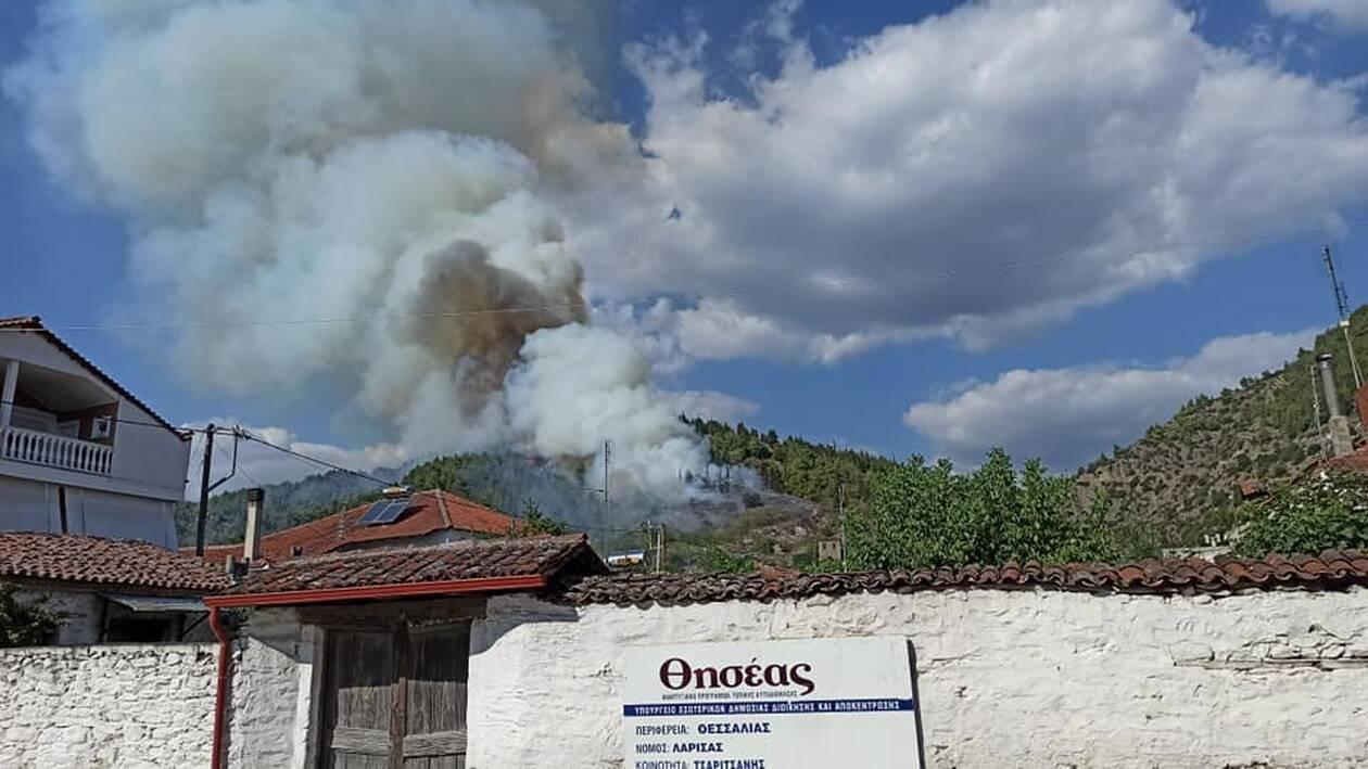 , Φωτιά στην Ελασσόνα το απόγευμα του Σαββάτου, Eviathema.gr | Εύβοια Τοπ Νέα Ειδήσεις