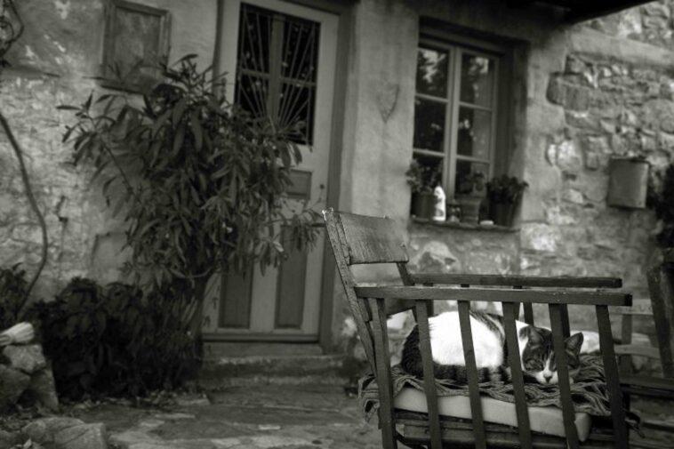 ληστεία καλοκαίρι Πιερία, Πιερία: Οι ληστές τον ξύπνησαν και τον σακάτεψαν στο ξύλο! Λύθηκε το μυστήριο των δραστών, Eviathema.gr   Εύβοια Τοπ Νέα Ειδήσεις