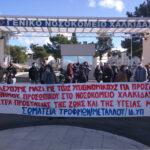 , Συμβολικές κινητοποιήσεις σήμερα Πέμπτη 26/11 στην Χαλκίδα, Eviathema.gr | Εύβοια Τοπ Νέα Ειδήσεις