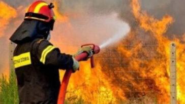 Πυρκαγιά σημειώθηκε λίγο μετά τις 5 το απόγευμα του Σαββάτου σε σπίτι, ΕΚΤΑΚΤΟ – Κόσκινα Ευβοίας: Πυρκαγιά σε οικία το απόγευμα του Σαββάτου, Eviathema.gr | Εύβοια Τοπ Νέα Ειδήσεις