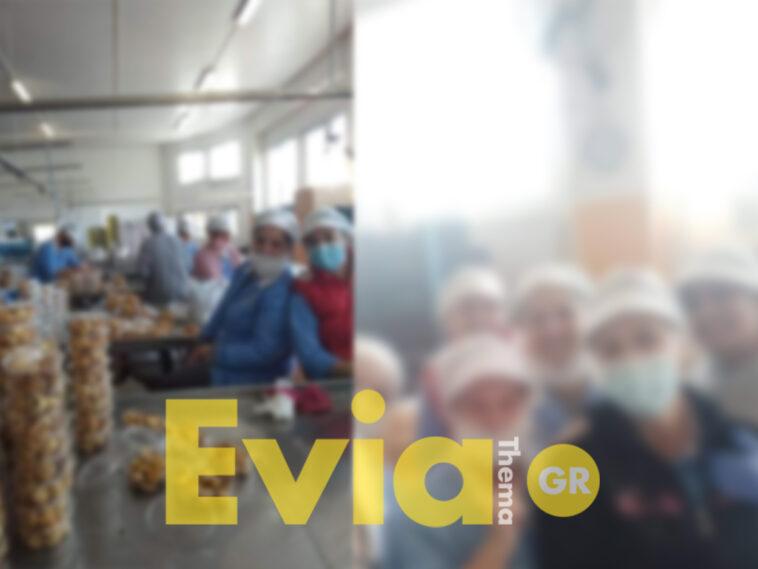 Αγωνίας για εργάτρια σε εργοστάσιο στο Βασιλικό Ευβοίας