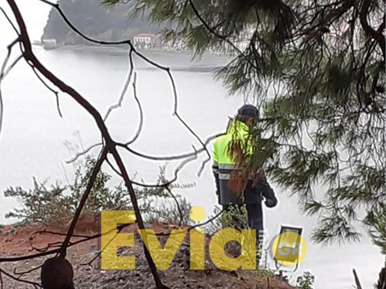 24ωρα η εξαφάνιση νεαρού από την Βόρεια Εύβοια, Θρίλερ στην Εύβοια: Χάθηκε 35χρονος στην Βόρειο Εύβοια από το Σάββατο – Αναζητήσεις στο σημείο [ΦΩΤΟΓΡΑΦΙΕΣ], Eviathema.gr | Εύβοια Τοπ Νέα Ειδήσεις