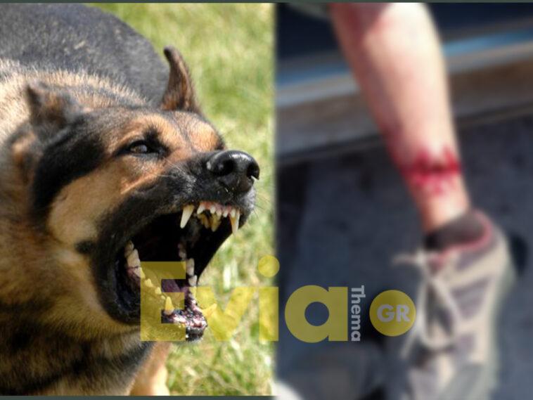 Άγρια Επίθεση Σκυλιών Ερέτρια