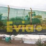 , ΣΟΚ Μαλακάσα Αττικής: Νταλίκα παρέσυρε και σκότωσε ακαριαία 5χρονο παιδί μέσα στην Δομή προσφύγων, Eviathema.gr | Εύβοια Τοπ Νέα Ειδήσεις