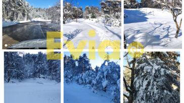 Δήμος Διρφύων Μεσσαπίων Χιόνια