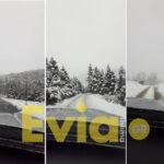 , Σέτα Ευβοίας: Τους 10 πόντους έφτασε το χιόνι – Απίστευτη χιονοθύελλα στην Αμπουδιώτισσα [ΦΩΤΟΓΡΑΦΙΕΣ – ΒΙΝΤΕΟ], Eviathema.gr | Εύβοια Τοπ Νέα Ειδήσεις