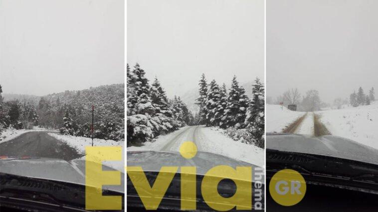 Σέτα Ευβοίας Χιονόπτωση