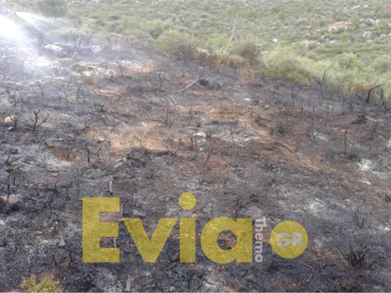 Εύβοια Νέα Πυρκαγιά Φωτιά Γυμνό