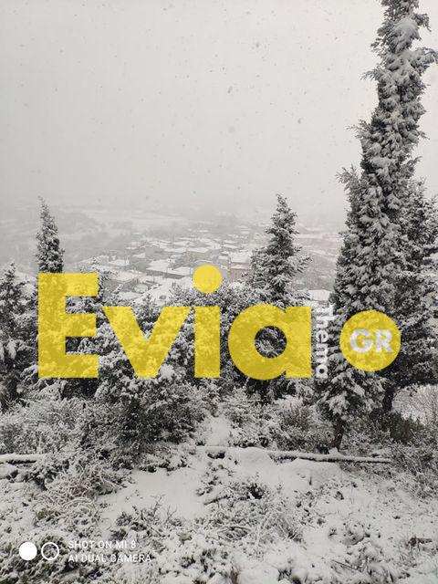 Στα λευκά βρέθηκε ντυμένο και το χωριό Καμαρίτσα του Δήμου Διρφύων Μεσσαπίων, Εύβοια: Στα Λευκά ντύθηκε η Καμαρίτσα Ευβοίας [ΦΩΤΟΓΡΑΦΙΕΣ], Eviathema.gr | ΕΥΒΟΙΑ ΝΕΑ - Νέα και ειδήσεις από όλη την Εύβοια