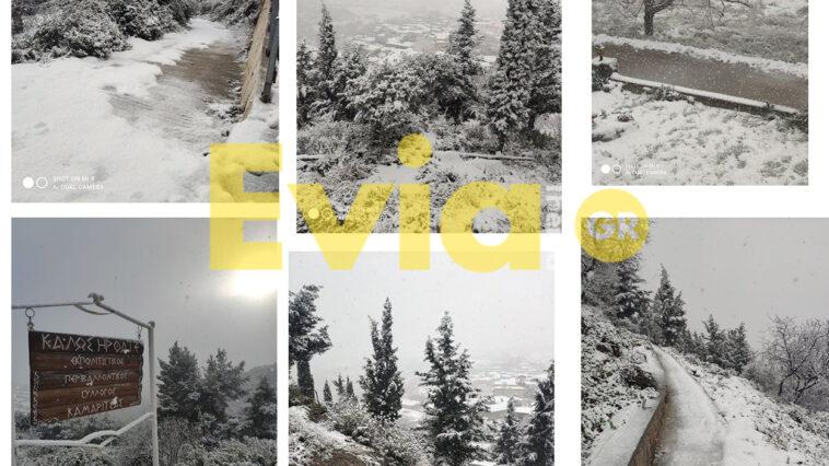 Καμαρίτσα Ευβοίας Χιόνια