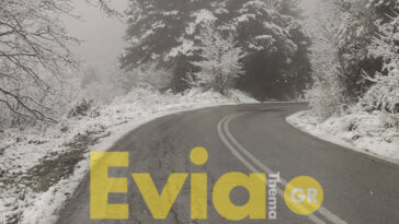 Στενή Ευβοίας Χιόνι